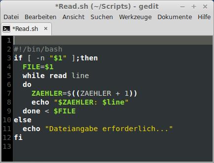 Basis-Script für eine Textdatei-Auswertung: Die While-Schleife liest Zeile für Zeile einer übergebenen Datei ein und zeigt sie in diesem Fall lediglich mit Zeilenummer an.